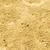 zand · geïsoleerd · shot · tuin · ander - stockfoto © mycola