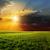 sötét · este · égbolt · zöld · mező · viharos - stock fotó © mycola