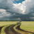 rainy clouds over field with road stock photo © mycola