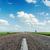 blanco · línea · asfalto · carretera · nubes · árbol - foto stock © mycola
