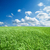 エンドレス · 緑の草 · フィールド · 深い · 青空 · 空 - ストックフォト © mycola