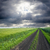 rural road in green field under cloudy sky stock photo © mycola