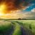 道路 · 劇的な · 日没 · 空 · 太陽 · 抽象的な - ストックフォト © mycola