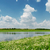 blue sky with clouds over river and meadow with chamomiles stock photo © mycola