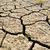 drought stock photo © mycola