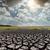 rachado · terra · grama · mudança · climática · aquecimento · global · textura - foto stock © mycola