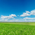 campi · alberi · cielo · blu · nubi · primavera - foto d'archivio © mycola