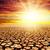 drought land under red sunset stock photo © mycola