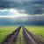 rayo · carretera · campo · camino · rural · árbol · paisaje - foto stock © mycola