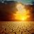 Глобальное · потепление · драматический · закат · треснувший · земле · солнце - Сток-фото © mycola