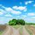 deux · rural · routes · horizon · nuageux · ciel - photo stock © mycola