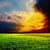 dramatic sunset over green field stock photo © mycola