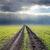 estrada · campo · chuva · molhado · agrícola - foto stock © mycola