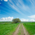 dirty road in green field and blue sky with clouds stock photo © mycola