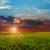 escuro · noite · céu · verde · campo · tempestuoso - foto stock © mycola