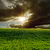 agricultural green field and dramatic sunset stock photo © mycola