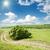 rural · estrada · horizonte · grama · campo · tempestade - foto stock © mycola