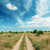 rural road in green landscape and dramatic blue sky with clouds stock photo © mycola