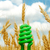 green eco bulb in field with harvest stock photo © mycola