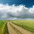 農村 · 道路 · フィールド · 車 - ストックフォト © mycola