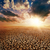 干ばつ · 土地 · 日没 · 地球温暖化 · 水 - ストックフォト © mycola