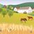 organic farm stock photo © myosotisrock