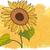 gigante · flor · ilustração · crianças · brincando · criança · menino - foto stock © myosotisrock