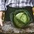 organikus · szuper · egészséges · izolált · fehér · zöldség - stock fotó © mythja