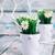 százszorszépek · virágzik · hóbortos · illusztráció · virág · terv - stock fotó © mythja