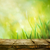 fresche · tavolo · in · legno · giardino · foglie · verdi - foto d'archivio © mythja