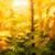 éolienne · soleil · au-dessous · bleu · énergie - photo stock © mythja