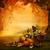 秋 · デザイン · 森林 · にログイン · 谷 - ストックフォト © mythja