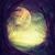 erdő · hold · éjszaka · fenyőfa · fák · felhők - stock fotó © mythja