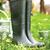 jardin · outils · pot · fleurs · d'été · herbe · travaux - photo stock © mythja