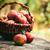 fonott · kosár · zöld · almák · friss · fából · készült - stock fotó © mythja