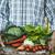 produire · organique · vert · oignons · écran - photo stock © mythja