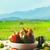 バスケット · 新鮮な野菜 · 木製 · 素朴な · 食品 - ストックフォト © mythja