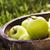 organique · pommes · été · herbe · panier · fraîches - photo stock © mythja