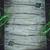 bamboe · plant · houten · tafel · exemplaar · ruimte · voedsel · achtergrond - stockfoto © mythja