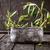 olive · ciotola · olio · d'oliva · buio · legno · rustico - foto d'archivio © mythja