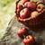 fraîches · organique · rouge · pommes · noir · cadre - photo stock © mythja