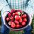 çanak · taze · çilek · ahşap · masa · ahşap · meyve - stok fotoğraf © mythja