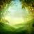 otono · caída · parque · camino · sol - foto stock © mythja