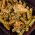 fusilli pasta pesto stock photo © mythja