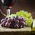 wijn · lijst · wijnstok · bladeren · druiven · restaurant - stockfoto © mythja