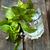 fizzy drink with mint stock photo © mythja