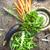 野菜 · 農村 · 市場 · 食品 · 背景 · スペース - ストックフォト © mythja