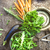 resumen · diseno · hortalizas · alimentos · naturaleza - foto stock © mythja