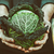 農家 · オーガニック · 野菜 · 農民 · 手 - ストックフォト © mythja
