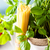 Ингредиенты · спагетти · здоровое · питание · чабер · говядины · томатный - Сток-фото © mythja